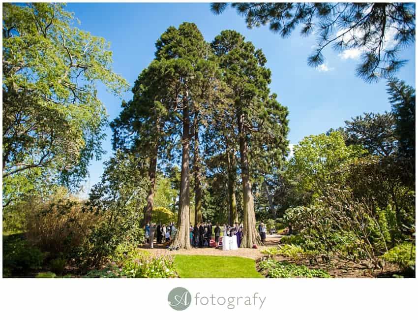 Edinburgh botanic gardens wedding
