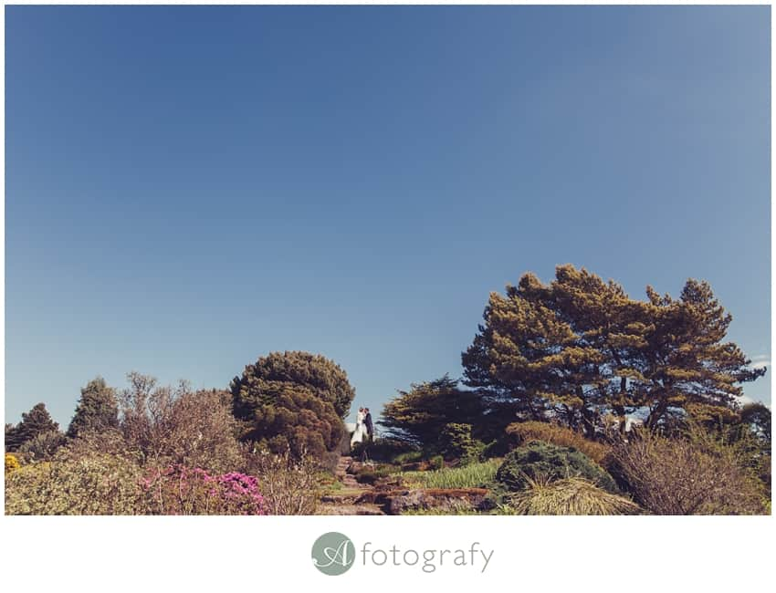 Edinburgh botanic gardens wedding photography-24
