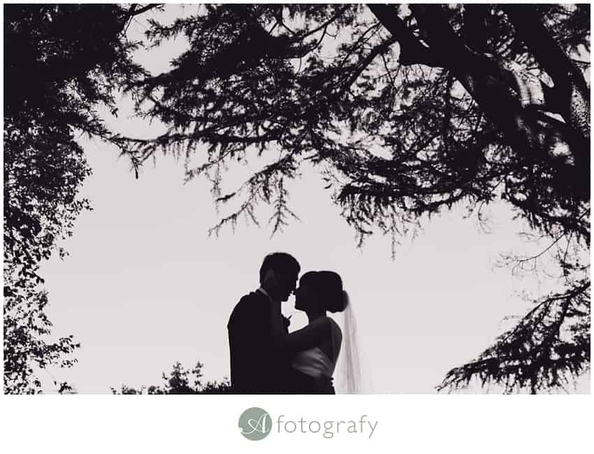 Edinburgh botanic gardens wedding photography-28