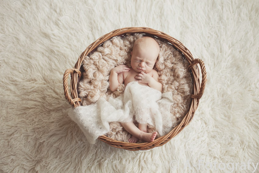 cute baby photos in basket