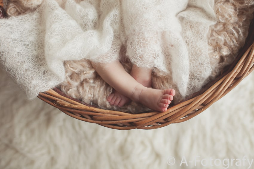 cute baby pictures in basket