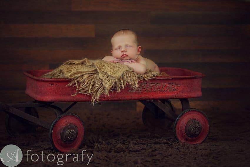 Edinburgh newborn photography sessions