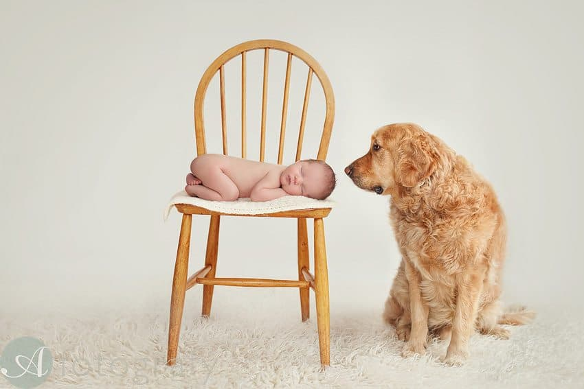 newborn and dog photos-001