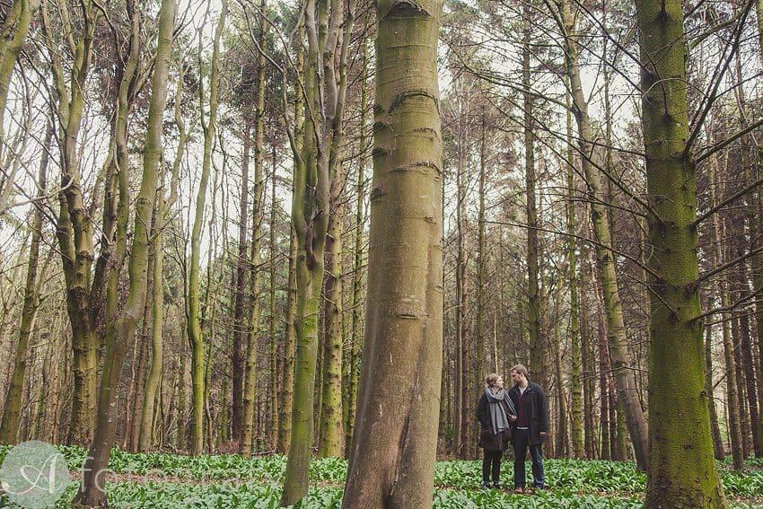 pre wedding photos broxmouth park-008