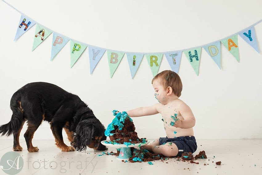 cute babies cake smash photos 20
