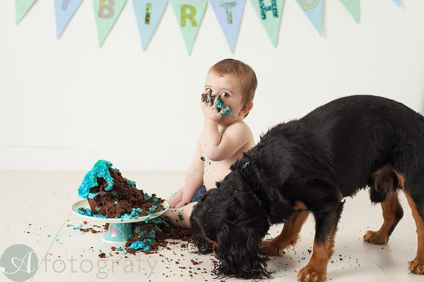 cute babies cake smash photos 21
