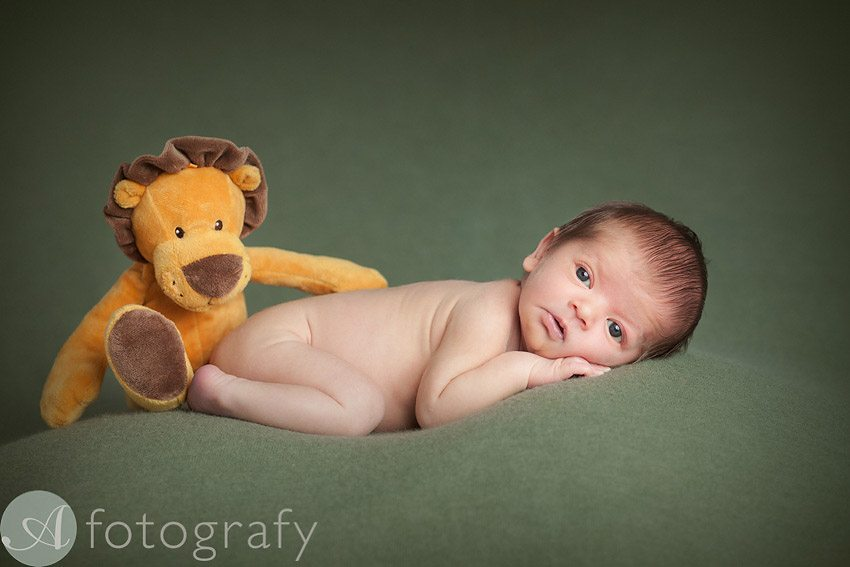 newborn baby photos 2