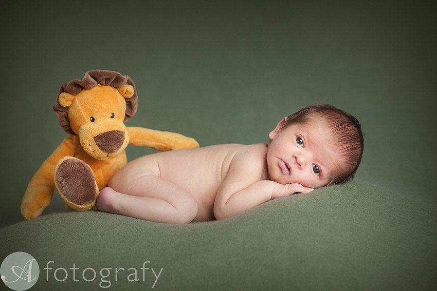 newborn baby photos 2