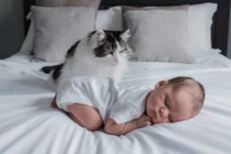 cat and newborn baby during photoshoot in Edinburgh