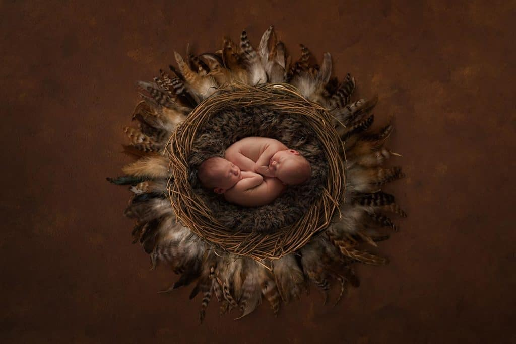 newborn twins in nest on luisa dunn digital background