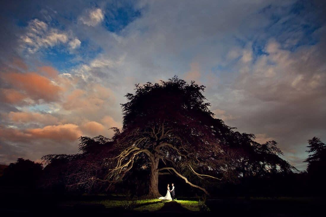 creative wedding photography with couple under the tree