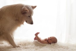 Newborn Photography 19