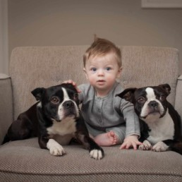 Baby posing for the portrait with dogs