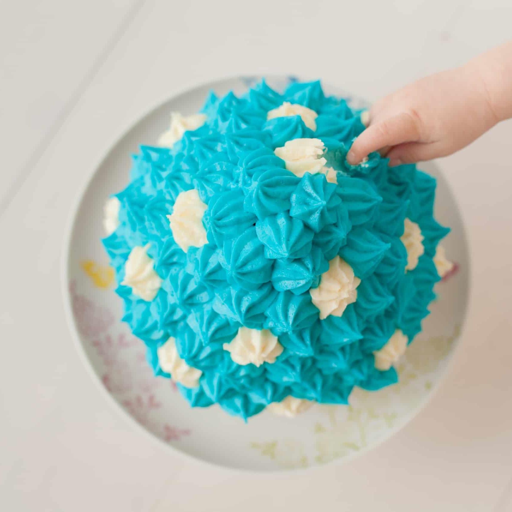 First Birthday Cake Smash Photography | Sophia-Belle 35