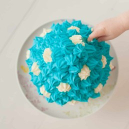 First Birthday Cake Smash Photography | Sophia-Belle 35