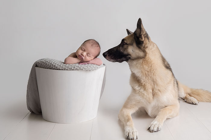 Newborn Baby and Dog Photography Guide 9