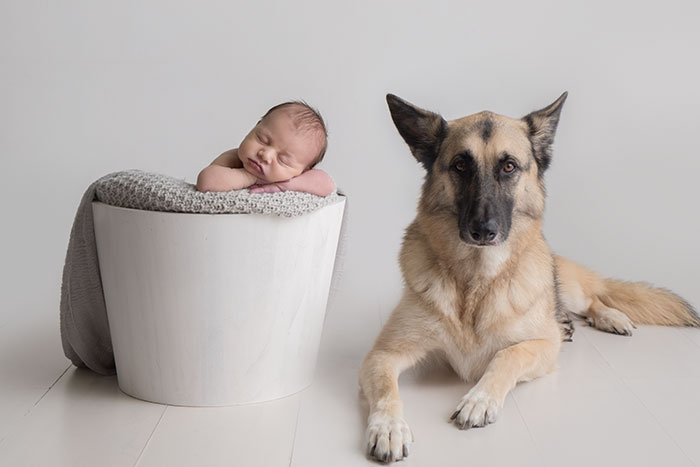 Newborn Baby and Dog Photography Guide 10