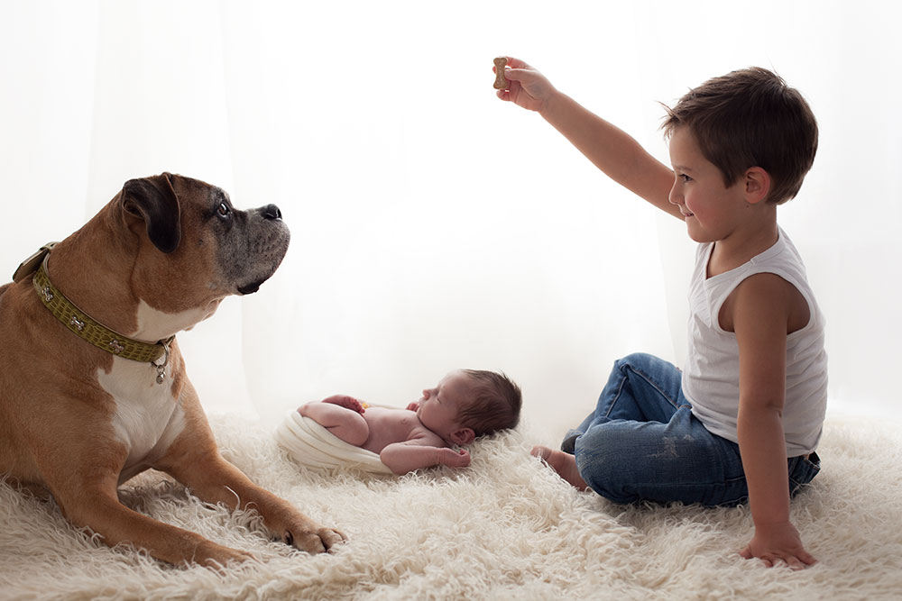 Newborn Baby and Dog Photography Guide 5