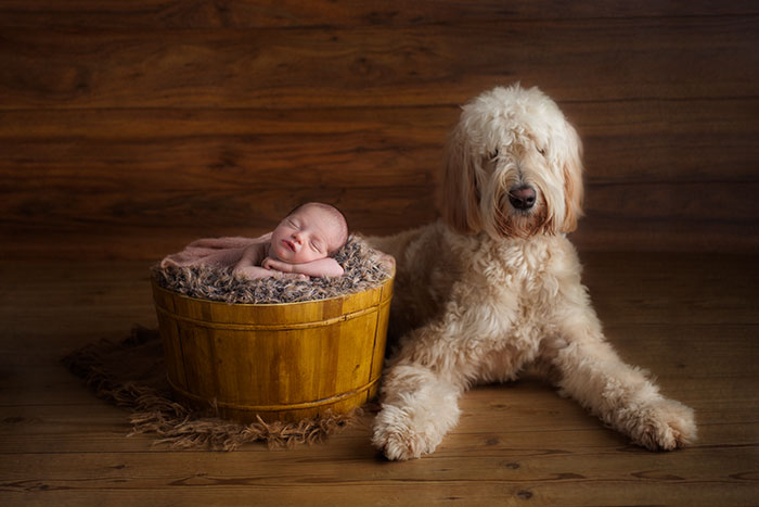 newborn with dog photography