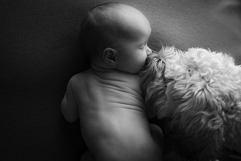 Newborn Baby and Dog Photography Guide 8