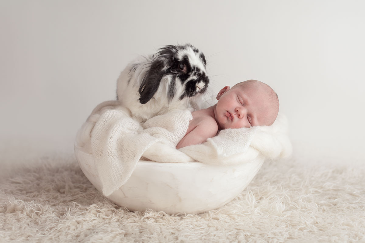 Newborn Baby and Dog Photography Guide 14