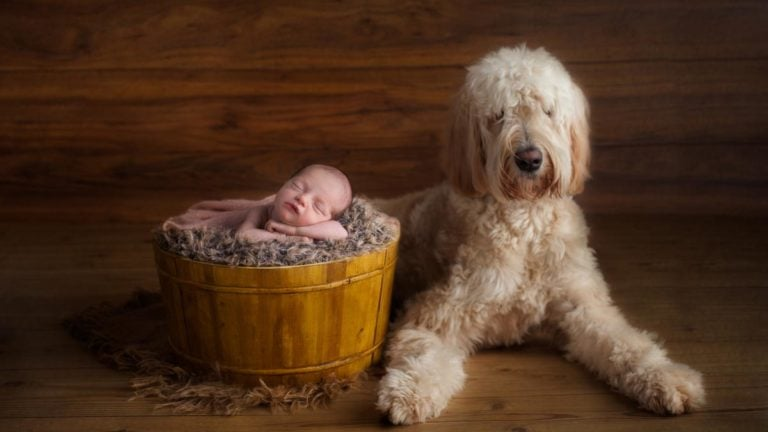 When is the best time for newborn photos 31