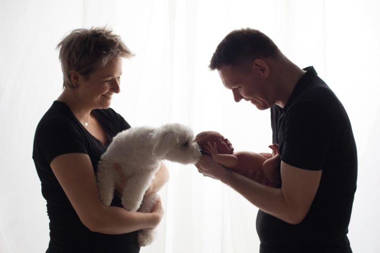 Newborn family photos with siblings and dogs. 17