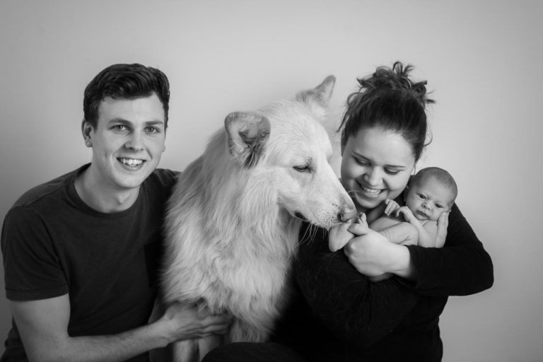 Newborn family photos with siblings and dogs. 18