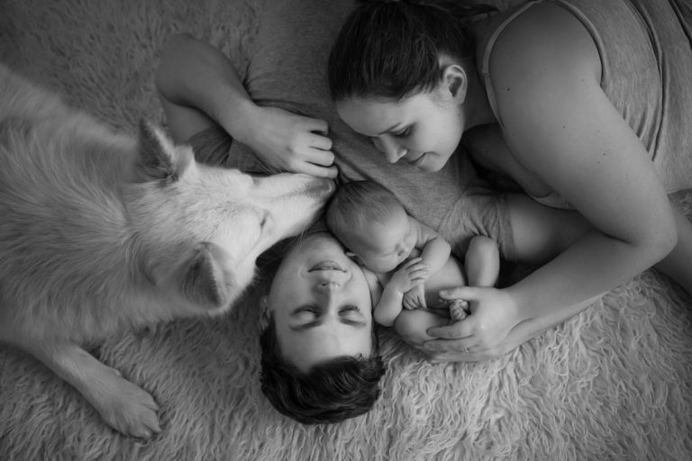 Newborn family photos with siblings and dogs. 19