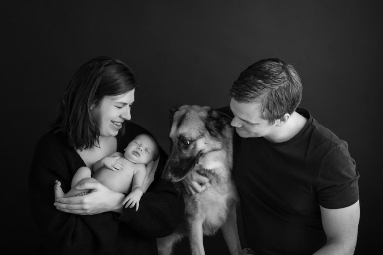 Newborn family photos with siblings and dogs. 22